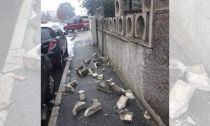 Indagini lampo: beccati i vandali che hanno distrutto la recinzione in pietra