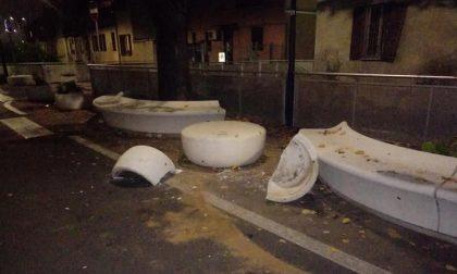 Beccato il vandalo che ha distrutto le panchine pubbliche