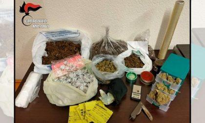 Arrestato spacciatore, in casa nascondeva mezzo chilo di marijuana