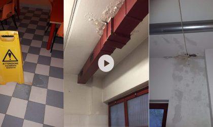 Infiltrazioni d'acqua alla scuola Petrarca, la risposta del Comune