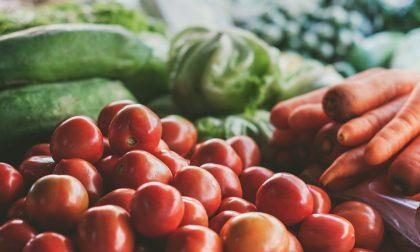 Alimentazione sana e leggera, necessità d'autunno