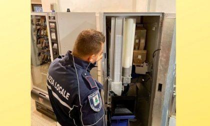 Ladri in biblioteca, spaccano i distributori automatici per rubare le monetine