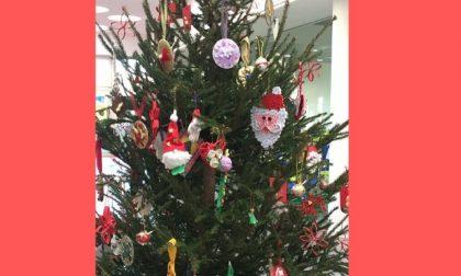 All'Istituto Margherita Hack un albero di Natale europeo FOTO