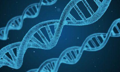 La ricerca medica consente l'aumento dell'aspettativa di vita