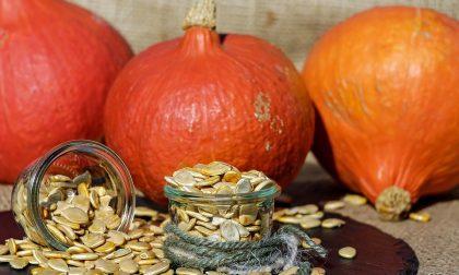 Come cucinare i semi di zucca e i loro benefici