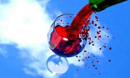 Regole per degustare vino nel modo migliore