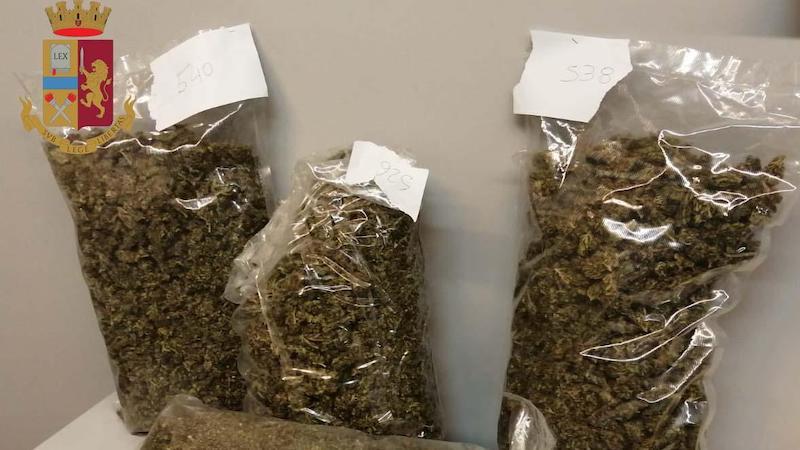 Sorvegliato speciale marijuana casa