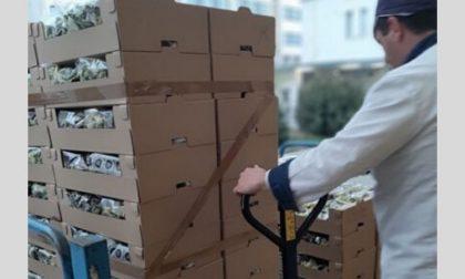 Scuole chiuse, Milano Ristorazione dona ai bisognosi 3 tonnellate di cibo