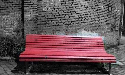 """""""Femminismo distrugge l'essere umano"""": vandalizzata la panchina rossa contro la violenza"""