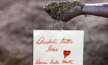 Promoimpresa: Cascina Santa Marta... decide di continuare a crederci