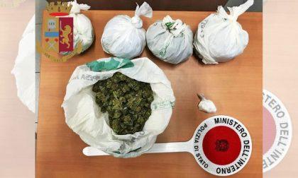 Nasconde oltre 300 grammi di droga in cantina: arrestato 43enne di Rozzano