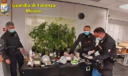 Scoperto laboratorio clandestino per la produzione di droga FOTO