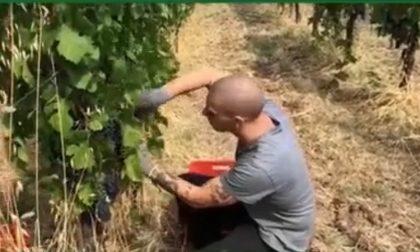 Bollettino Regione Lombardia di oggi 9 giugno: +192 positivi