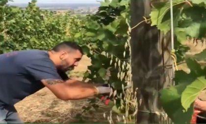 Bollettino Regione Lombardia di oggi 23 giugno: + 62 positivi