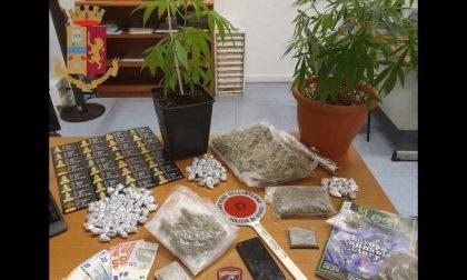 Droga in macchina e piante di cannabis in casa: arrestato 22enne