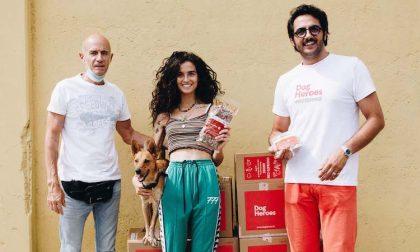 Una tonnellata di cibo (buono) per gli animali bisognosi: l'iniziativa di Dog Heroes