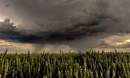 Allerta meteo in Lombardia, fronte perturbato: attesi forti temporali