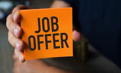 Offerta di lavoro: il negozio Casa cerca un addetto vendita