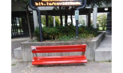 """Vandalizzata la panchina rossa, il sindaco: """"Deficienti, vi beccheremo"""""""