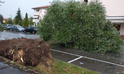 Maltempo: tetti scoperchiati dal vento in Lombardia, nubifragi in Piemonte