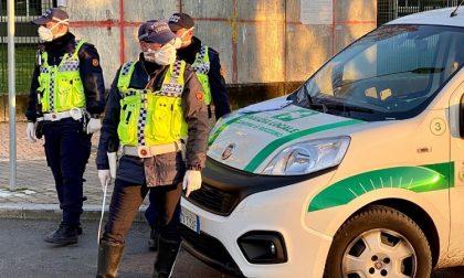 Furto di un furgone pieno di attrezzi da lavoro, la polizia locale lo ritrova al campo rom