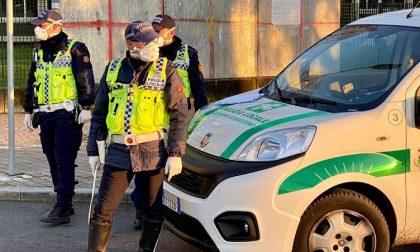Scappano dopo l'incidente: la polizia locale individua e denuncia i due 17enni
