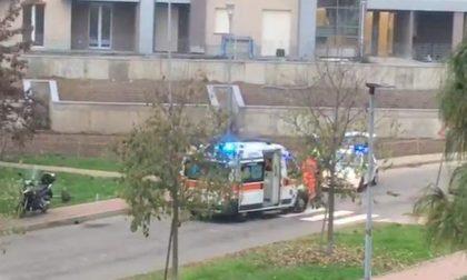 Centauro perde il controllo della moto e abbatte un palo: ferito 53enne