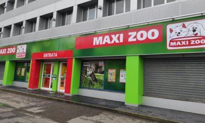 Maxi Zoo Italia, nuova apertura a Trezzano per il negozio dedicato agli animali