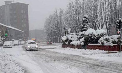 Emergenza neve a Milano e hinterland, disagi nella circolazione, alberi caduti e interventi del 118