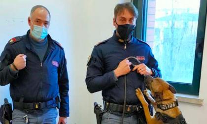 Droga nascosta al bar tra brioche e caffè: arrestato 41enne