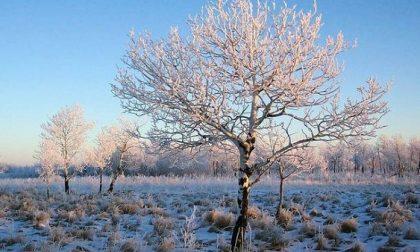 Previsioni Meteo Milano | Neve a Capodanno? Forse, ma nel caso pochissimi centimetri