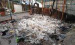 """Incendio devasta la colonia felina: """"C'è chi si diverte a distruggere"""""""