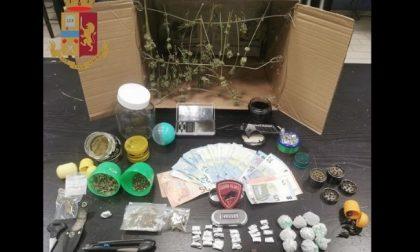 Arrestati due spacciatori, gli abitanti aiutano la polizia a far scoprire le dosi