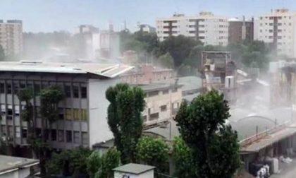 Polvere bianca ricopre balconi e auto: torna la preoccupazione in Alzaia Trento