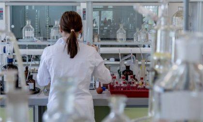 Covid, 7 varianti virali già nella prima fase della pandemia: lo studio del San Matteo