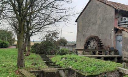 Creazione di aree naturali nel Parco Agricolo Sud Milano: è scontro