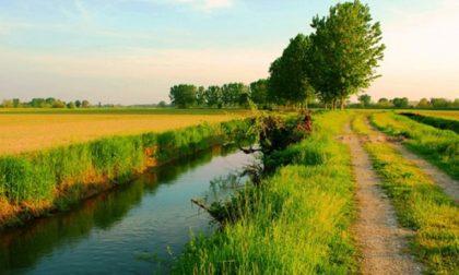 Creazione aree naturali nel Parco Agricolo Sud: mille firme degli agricoltori per dire no