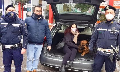 Pastore tedesco sparisce da una villa, la polizia locale lo ritrova nel campo rom