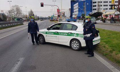 Fuma marijuana mentre guida un furgone: denunciato dalla polizia locale a Trezzano