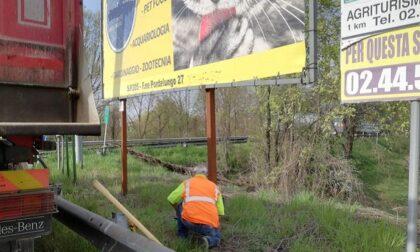 Decoro sulle strade provinciali: via i cartelli abusivi