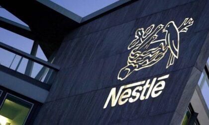 Nestlé Assago apre nuove posizioni: offerte per chi cerca lavoro