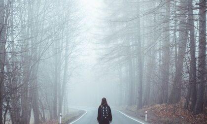 Due 15enni per saltare la scuola scappano nei boschi e fingono uno stupro