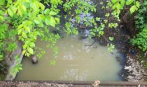 Acqua torbida e opaca al fontanile Cellini: controlli in corso