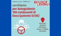 Offerte di lavoro: Afolmet cerca 100 conducenti di linea per Autoguidovie