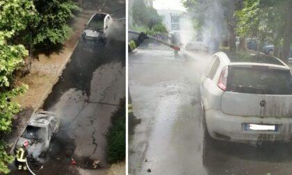 """Vandali danno fuoco ai """"piumini"""" dei pioppi: tre auto divorate dalle fiamme"""