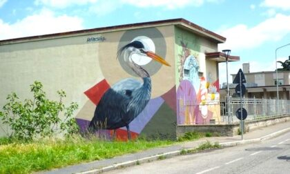 La città si colora con la street art: un airone disegnato sul Naviglio di Corsico