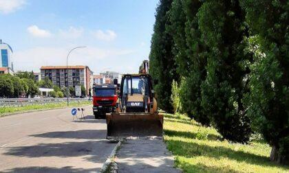Dossi e pista ciclabile in via Di Vittorio, dove morì travolta Daria