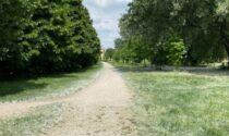 Il parco Travaglia si rinnova grazie al finanziamento per la forestazione urbana