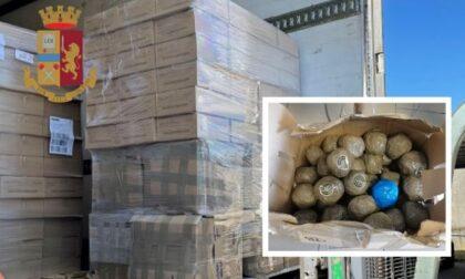 Camion pieno di droga: sequestrati 700 chili di hashish ad autista spagnolo